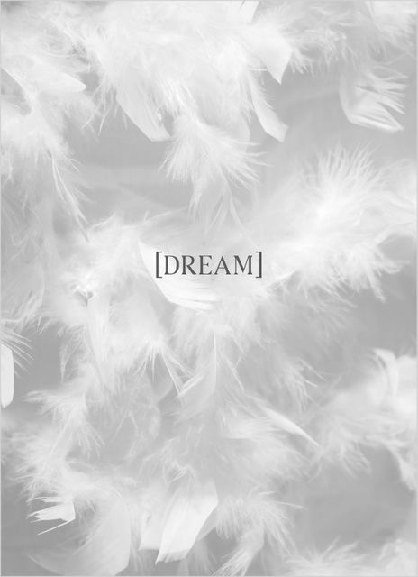 Feather dream text poster