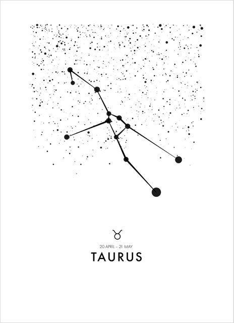 Poster oxen/Taurus poster