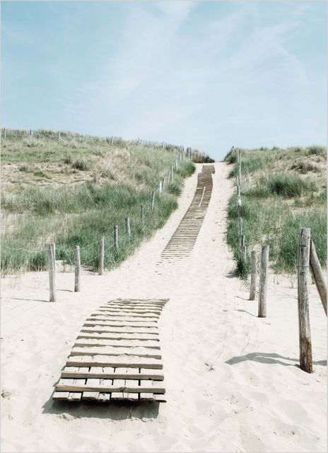 Way on sandy dunes poster