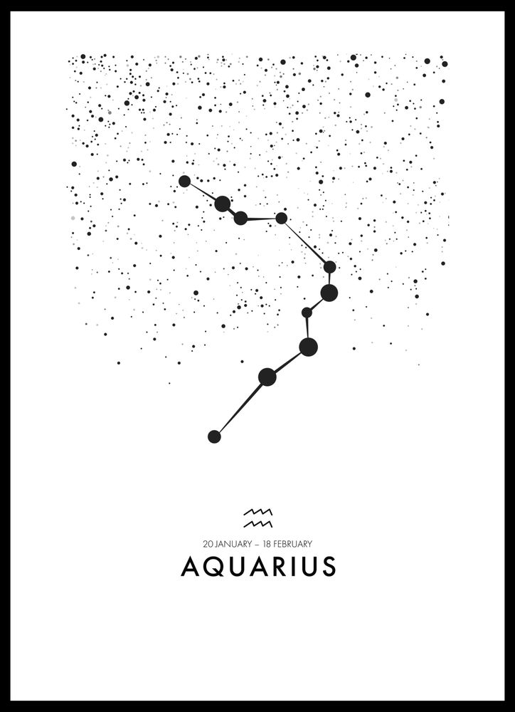Poster stenbocken/Capricornus poster