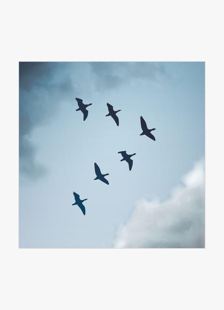 Fåglar och blå himmel poster