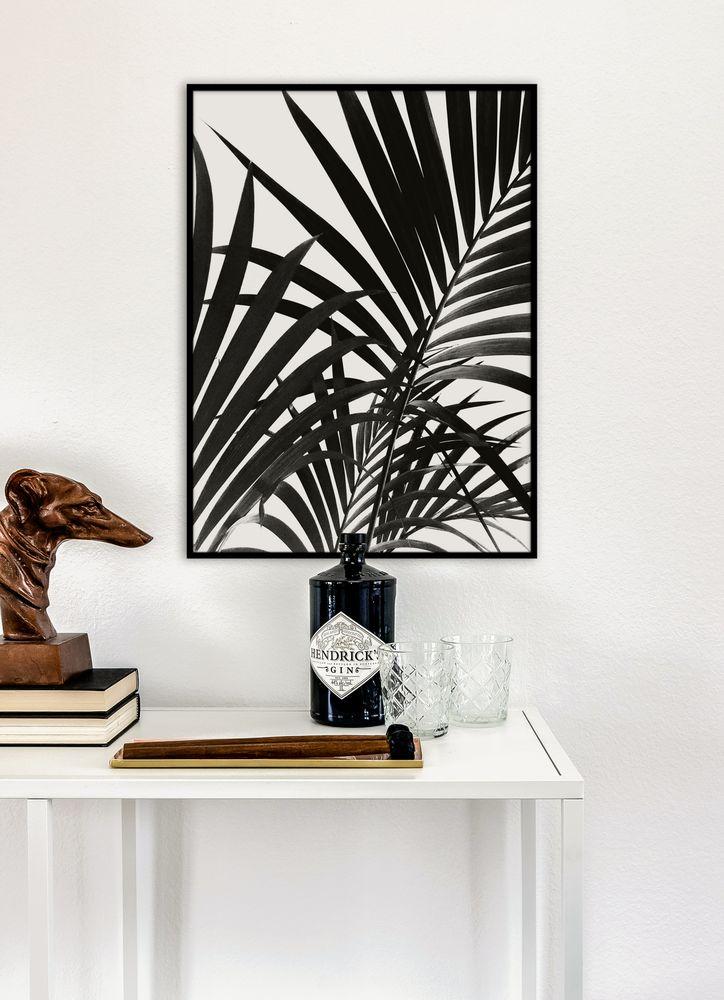Black palm leaves poster