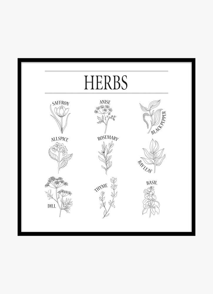 Herbs black & white poster