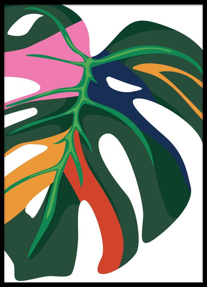 Monstera leaf 1