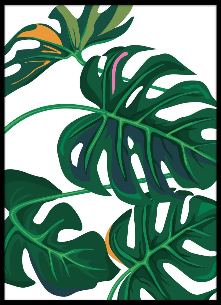 Monstera leaf 3