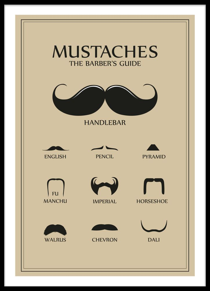Moustaches guide poster