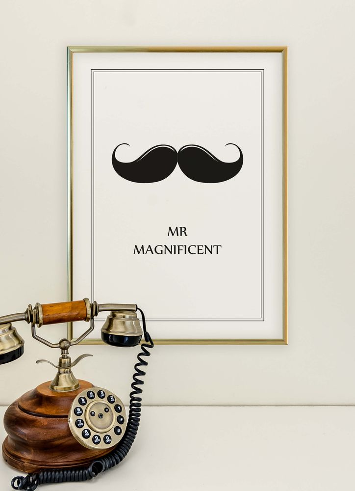 Mr Magnificent text poster