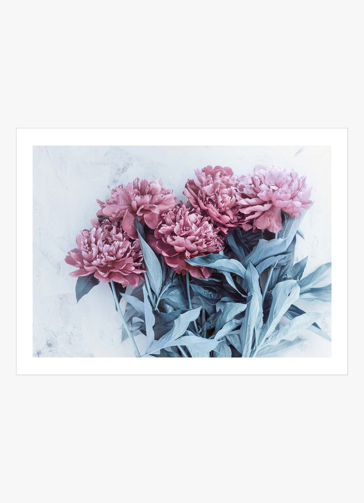 Peonies on table poster
