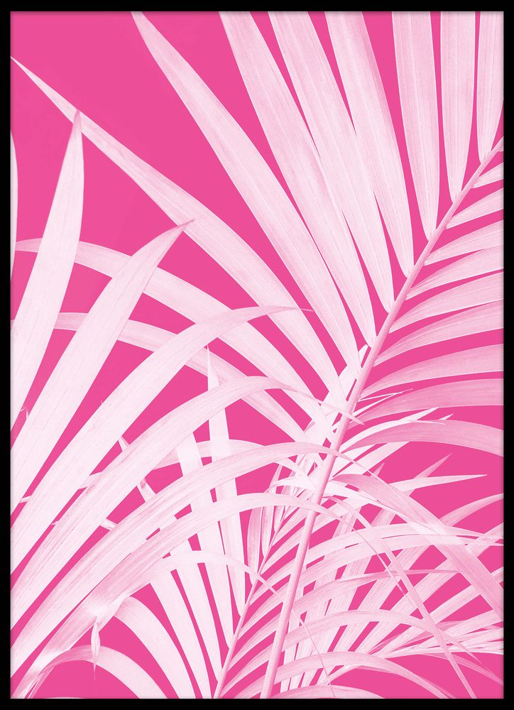 Pink palm leaves poster