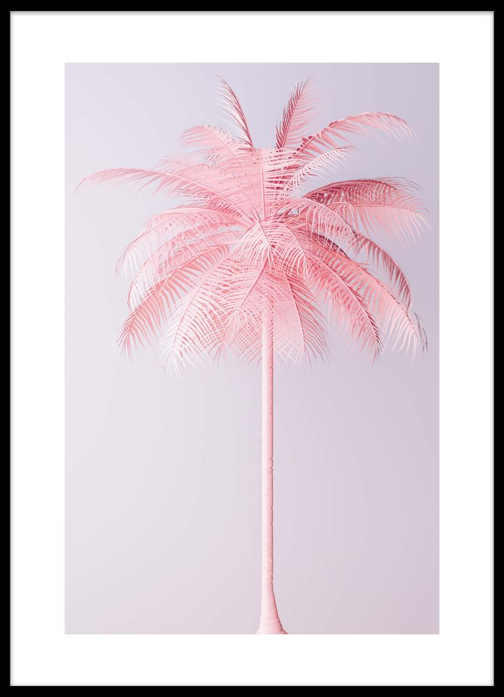 Rosa palm poster
