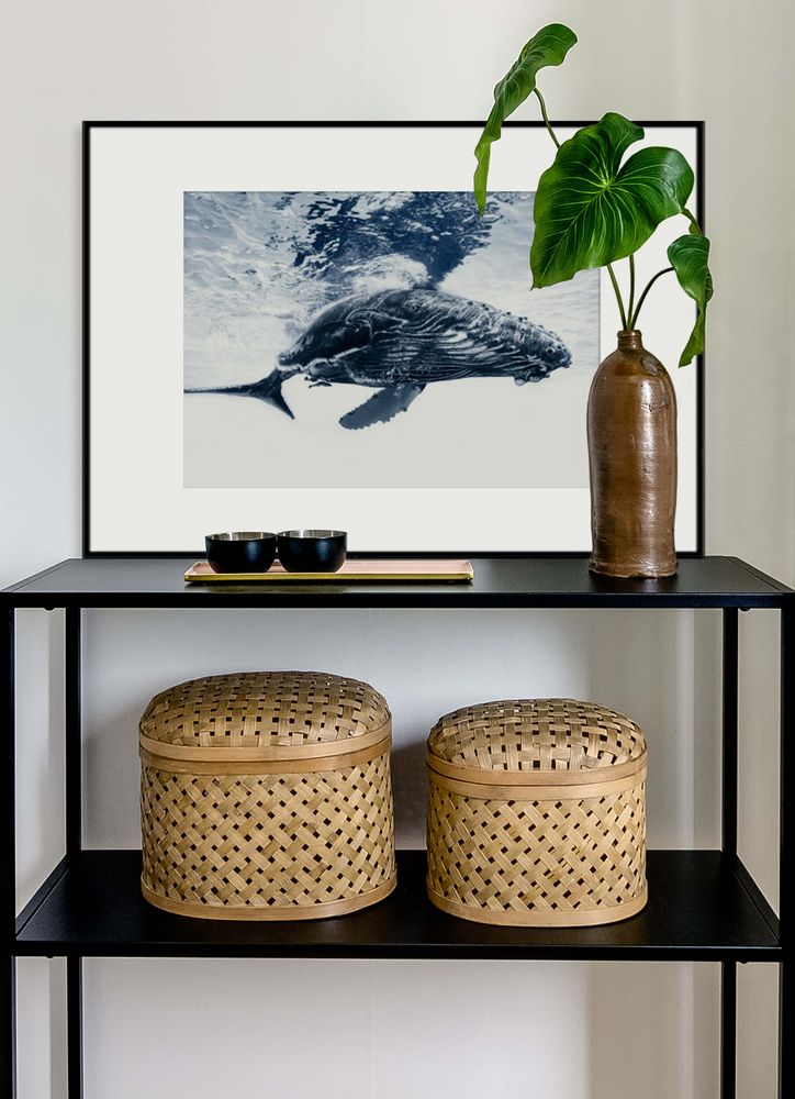 Whale calf poster