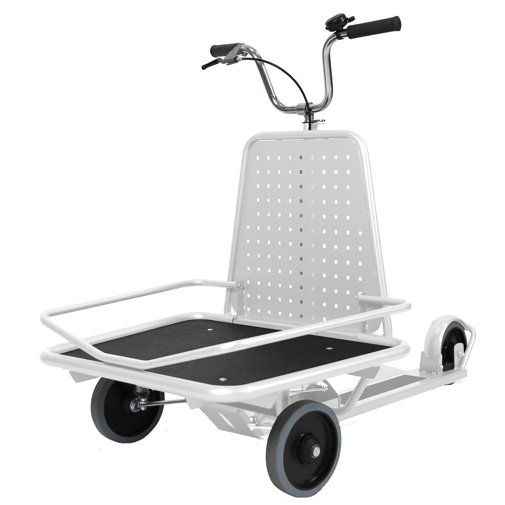 Scooter X19