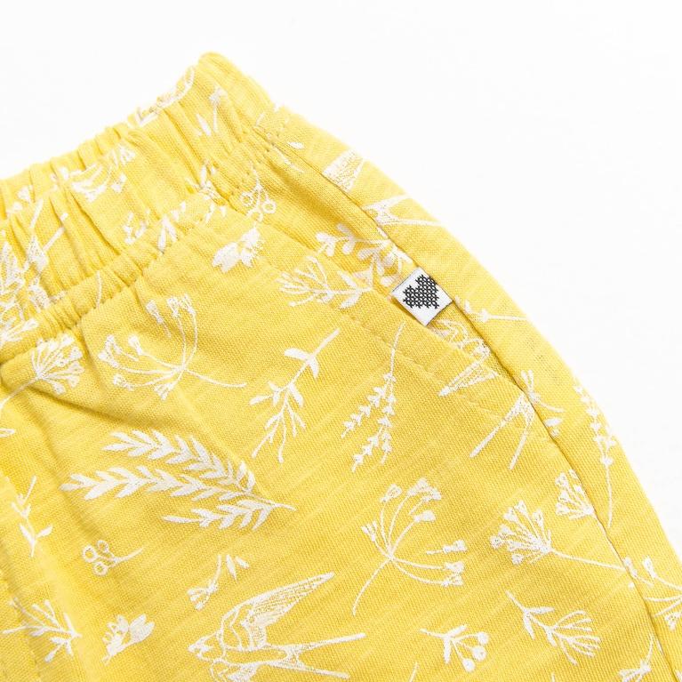Tuscany / K Shorts Shorts