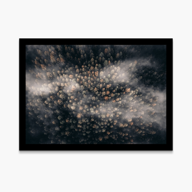 """Poster 50x70 """"Magical trees"""""""