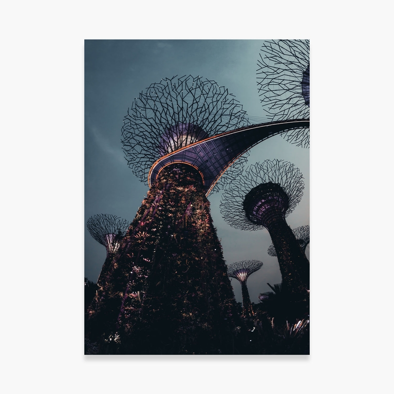 """Poster 50x70 """"Mechanical Trees"""""""
