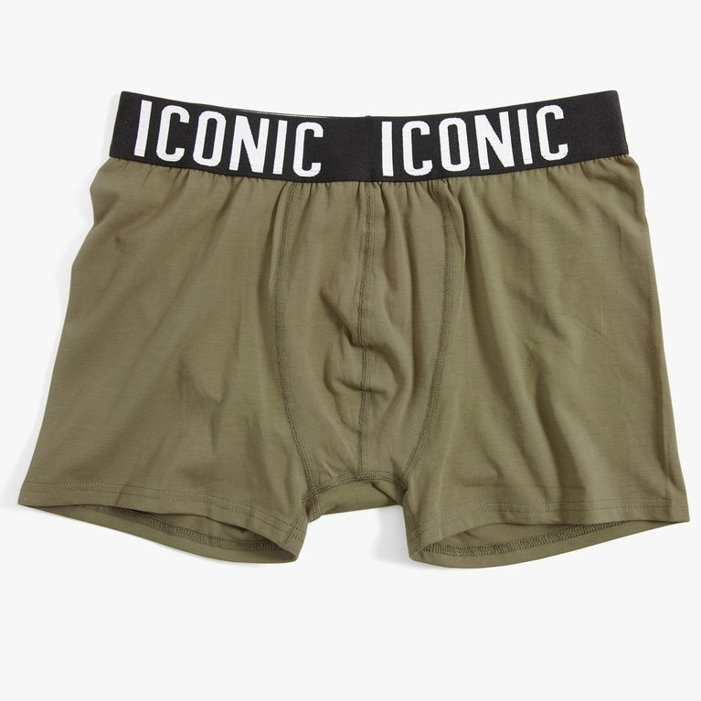 "Boxer ""Iconic Boxer"""