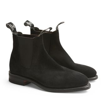 R.M.Williams Macquarie Suede chelsea boots, dam