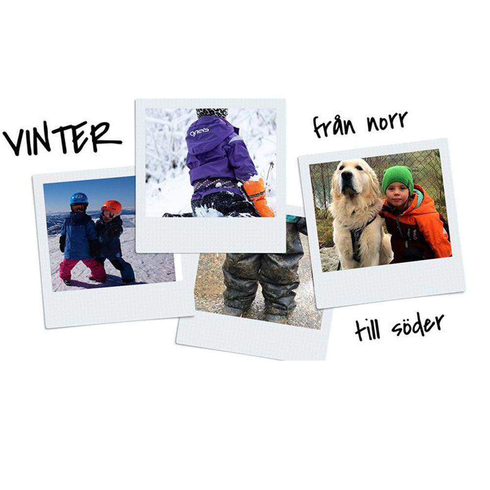 Vinter i sveruge