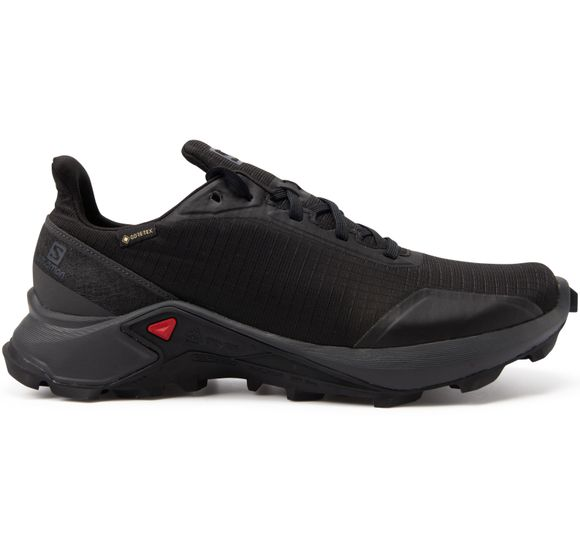 SHOES ALPHACROSS GTX