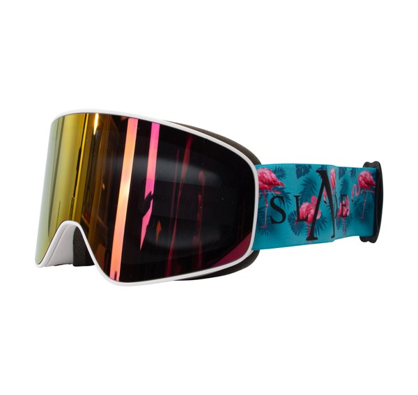 Freeride Magnet Goggles