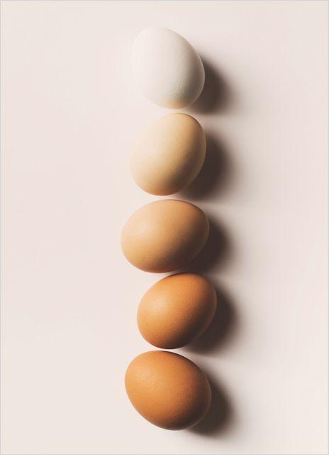 Ägg poster