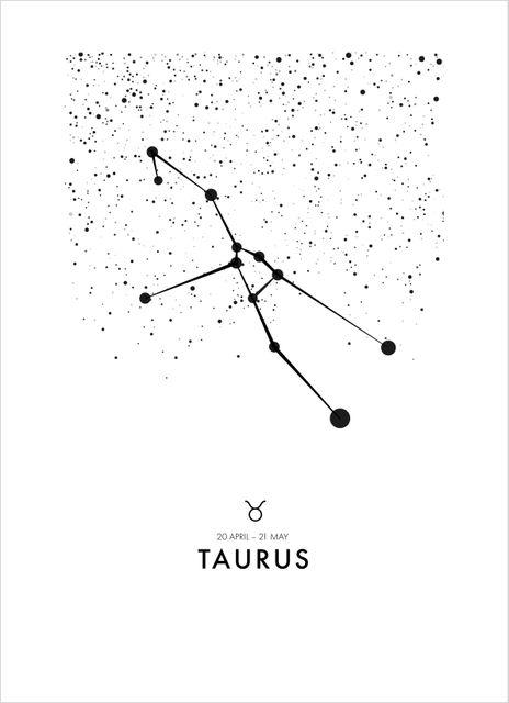 Poster oxen/Taurus poster