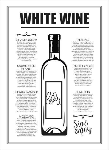 White wine guide text poster