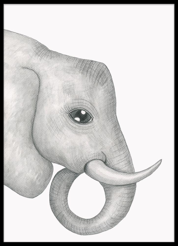 Elefant i akvarell