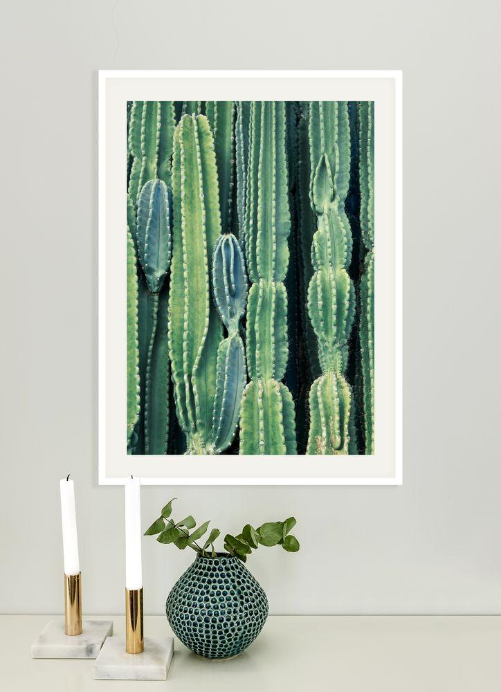 Kaktus vägg poster