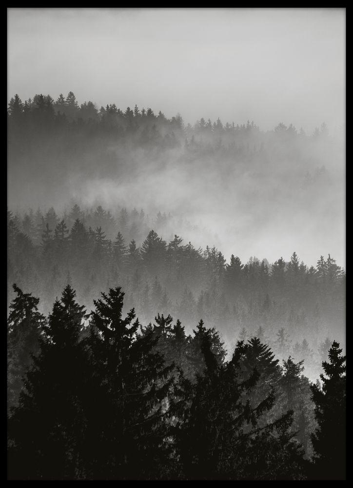 Skog i dimma poster