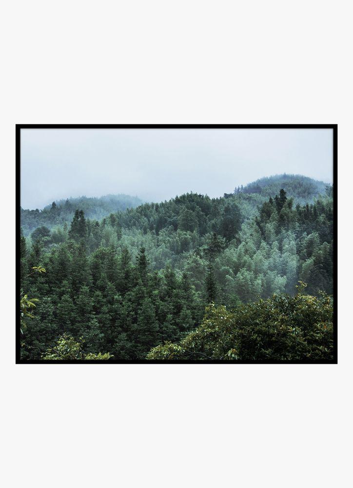 Grön skog poster