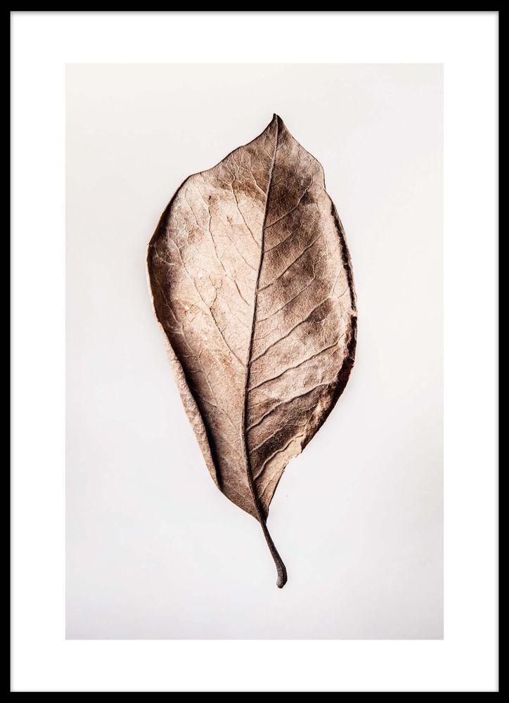 Torkat blad poster