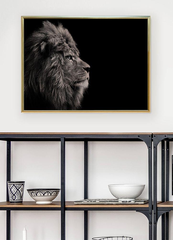 Lejon från sidan poster