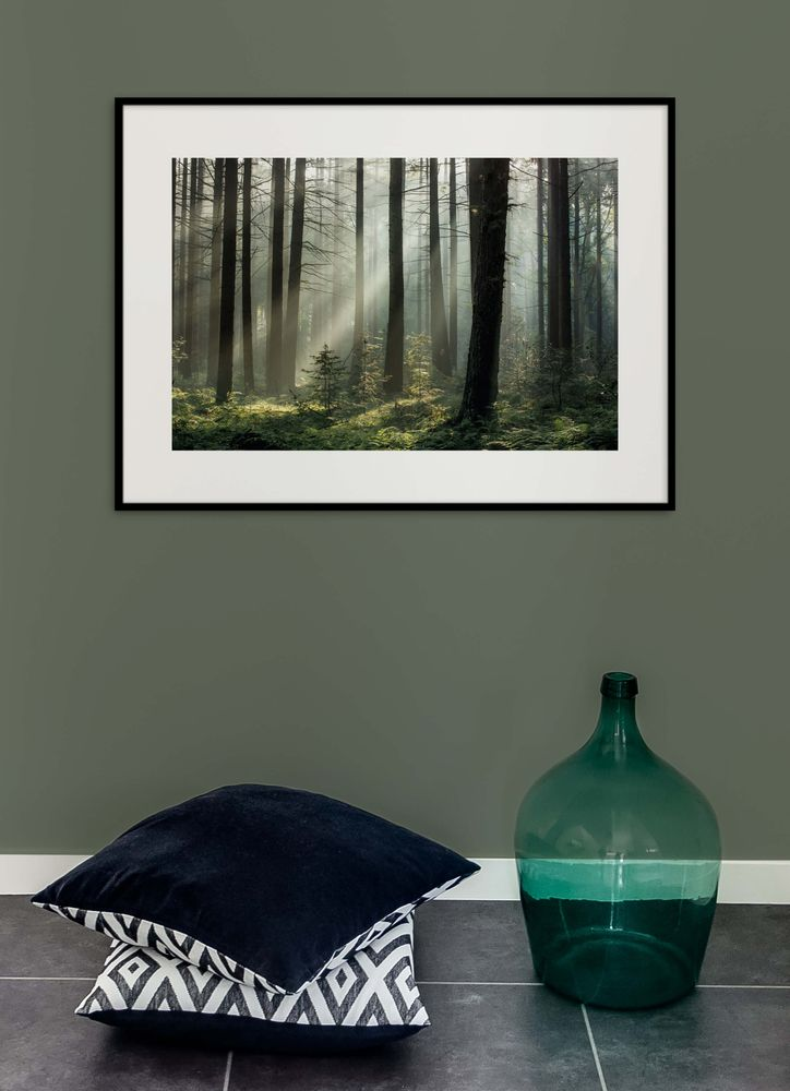 Skog i gryning poster