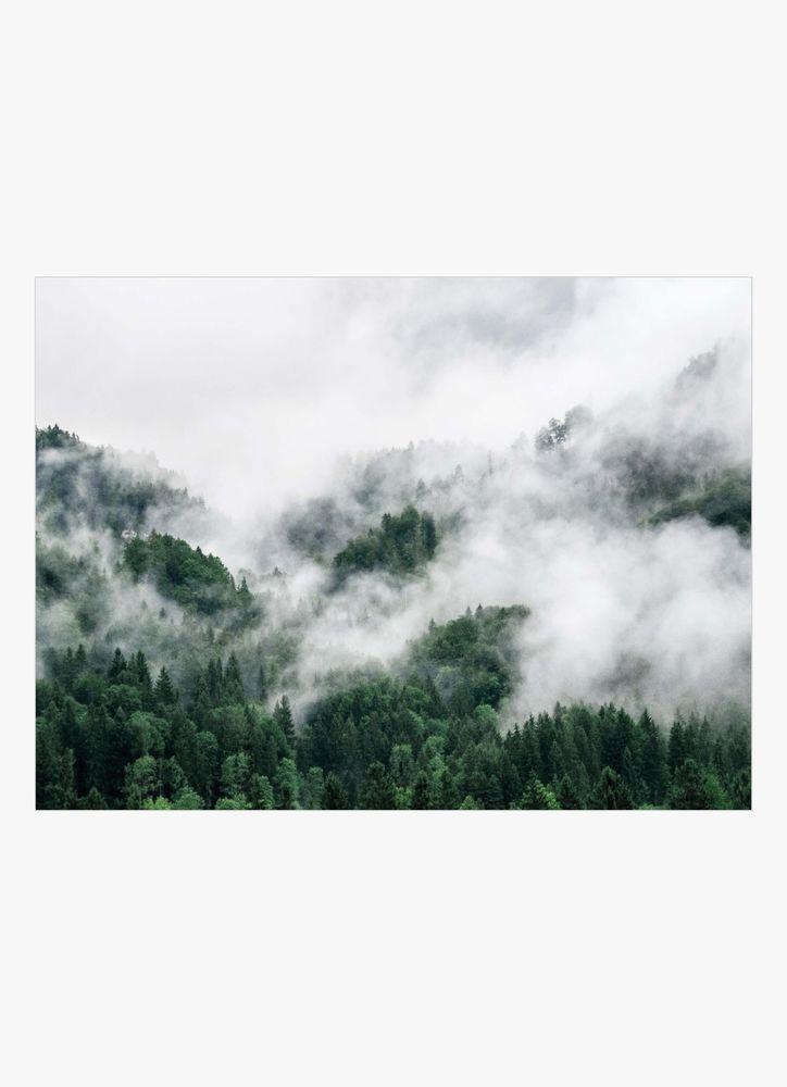 Träd och dimma poster