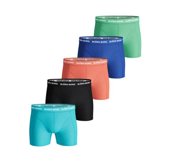 Shorts Seasonal Solid 5P