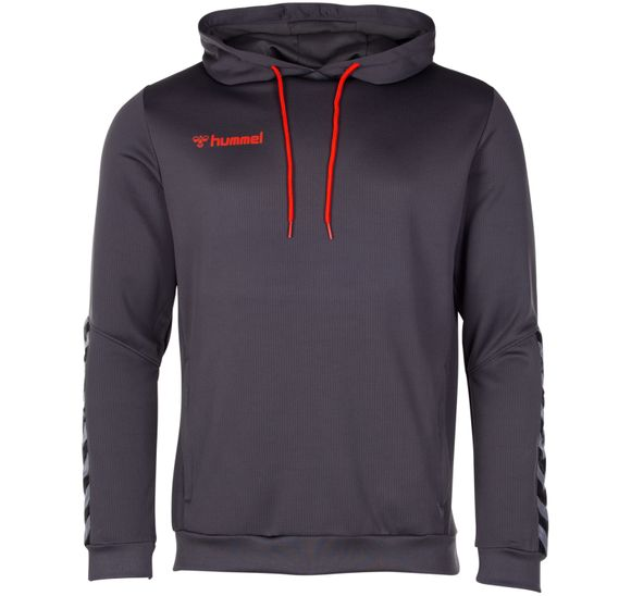 hmlAUTHENTIC POLY HOODIE