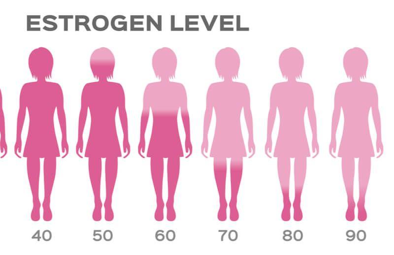 östrogen